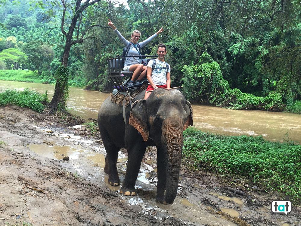 travel thailandia mae taeng elephant park