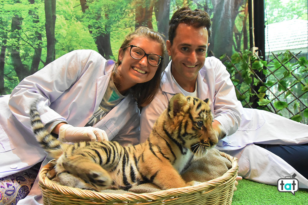 thailandia tiger kingdom