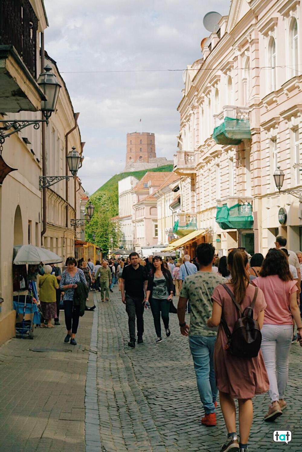 Vilnius con vista castello Gediminas
