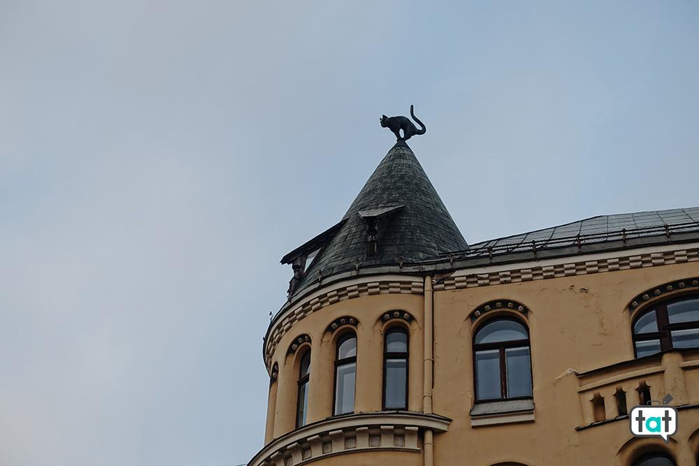 Casa del gatto Riga